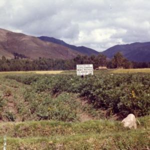 Agricultural Mission to Peru - Fertilizer Demonstration