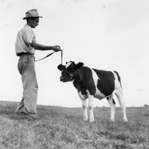 State College Dairy Farm.  Sept. 1941