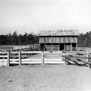 Bull pen and barn on Cottonade Farm