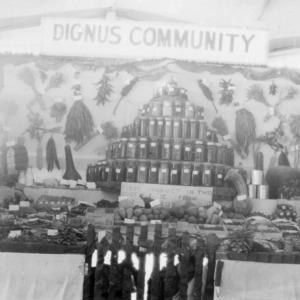 Dingus Community Farm Exhibit at Lee County Fair