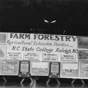 Farm Forestry Exhibit during American Forestry Association meeting