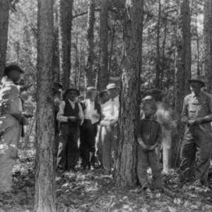 Farmers and county agent studying forest land management
