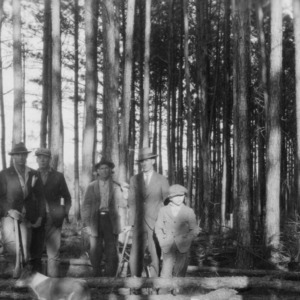 Men in forest after thinning demonstration