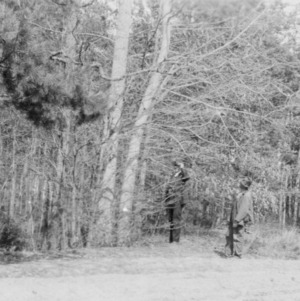 District agent and farmer examining pines before thinning