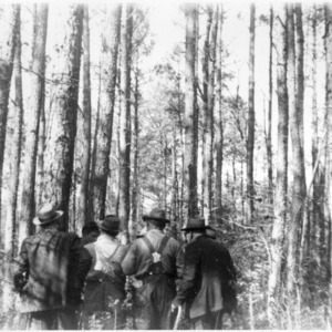 Group of farmers at forest thinning demonstration