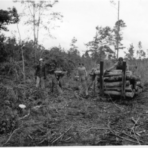 Men loading cart with timber from land clearing