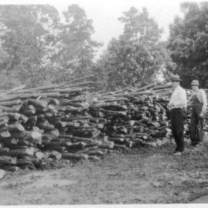 Stacks of fuelwood after thinning demonstration