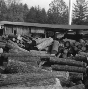 Log yard at plant of Hickory Fiber Company