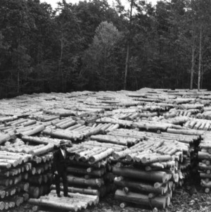 J. V. Hofmann with lumber stacks in the George Watts Hill Demonstration Forest