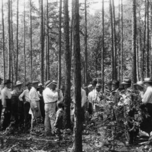 Extension Forester holding forest tour