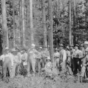 County Agent O. H. Phillips and Stanly County farmers examining timber on farm of T. R. Turner