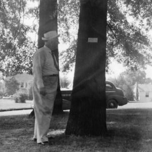 R. W. Graeber and tree with name plate at Concord High School
