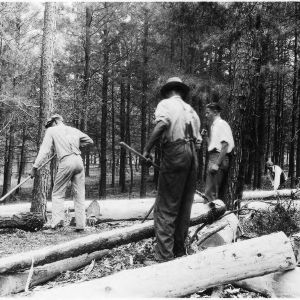 Men peeling pulpwood at demonstration