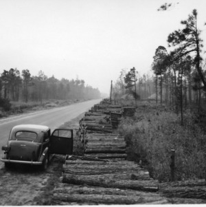 Pulpwood on side of road after harvesting