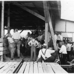 Lecture on lumber industry at Sawmill School