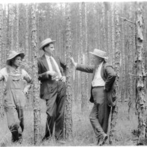 Men among stunted shortleaf pine