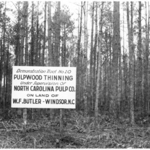 Sign for pulpwood thinning demonstration