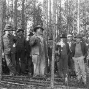 Anson Farmers at timber thinning demonstration