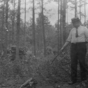 Brush disposal forestry demonstration on Klondike Farm