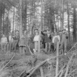 Forestry students at timber thinning demonstration at Happy Valley