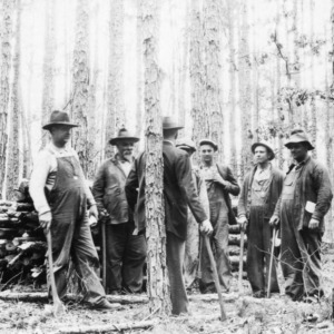 County Agent O. H. Phillips instructing M. L. Effird and neighbors about timber crops