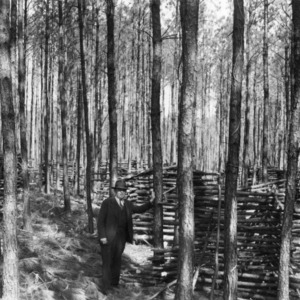 County Agent John C. Anderson practicing timber thinning on his farm