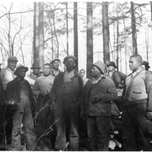 Group at timber thinning demonstration