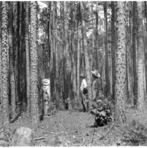 W. A. Beck, Agent George Evans, and others discussing importance of thinning pines