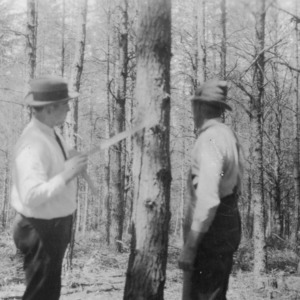 Agent P. M. Hendricks and C. G. Hartley inspecting tree to be trimmed