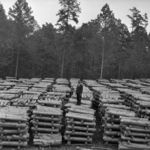 J. V. Hofmann with lumber stacks in George Watts Hill Demonstration Forest