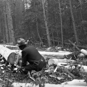 Man working at lumbering operation in the George Watts Hill Demonstration Forest