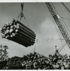 Bundle of logs lifted by crane