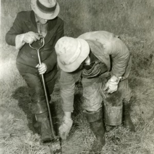Men working in Hofmann Forests