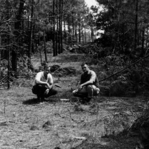 Hill, Hofmann, and Schenck Forests