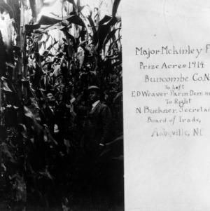 Prize-winning corn field