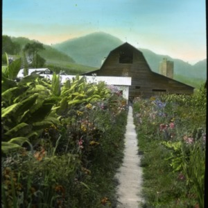 Barn, fields and a row of flowers with mountains in the background