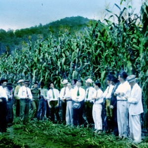 Group of men standing in front of a corn field in a hilly area