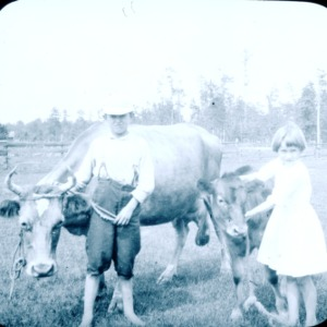 Two children with a cow and calf on S. S. Sawyer's farm