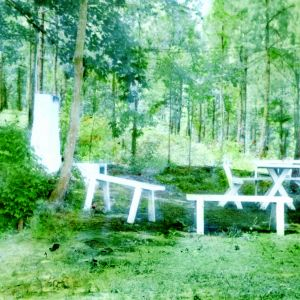 Benches and tables in the woods
