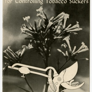The Clip-Oil for Controlling Tobacco Suckers (Agricultural Experiment Station Information Series No. 3)