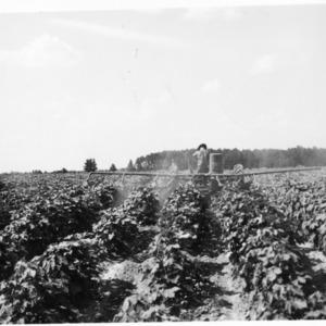 8 row J. D. cotton duster