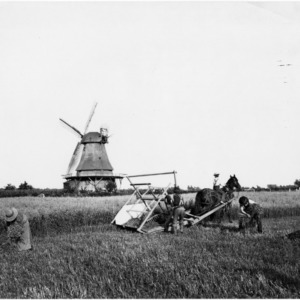 Workers and horse in field with reaper and windmill