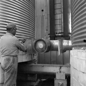 Grain drying and storage