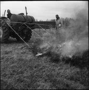 Men with agricultural machinery and fire in field