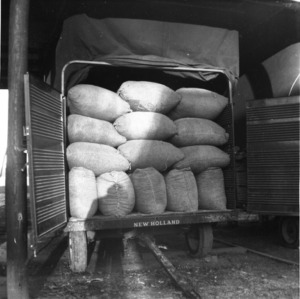 Sacks piled in New Holland wagon