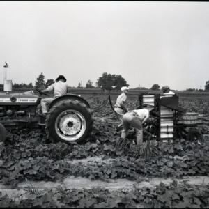 Ford Tractor Pulling Agricultural Machinery for Crop Harvesting