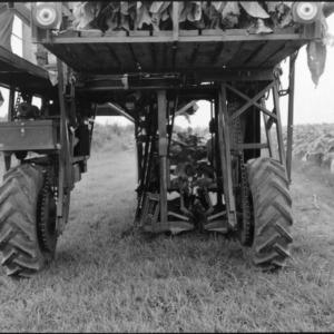 Tobacco Harvesting Machinery
