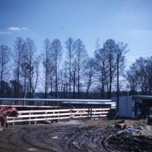Beef, 1960 - 1964