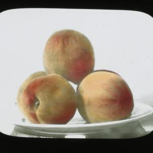 Peaches, colorized, circa 1910