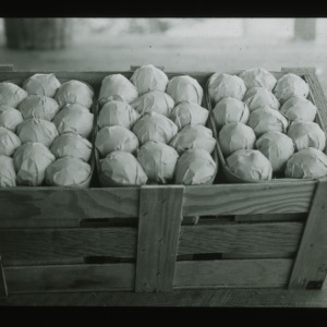 Crate of Peaches, circa 1910
